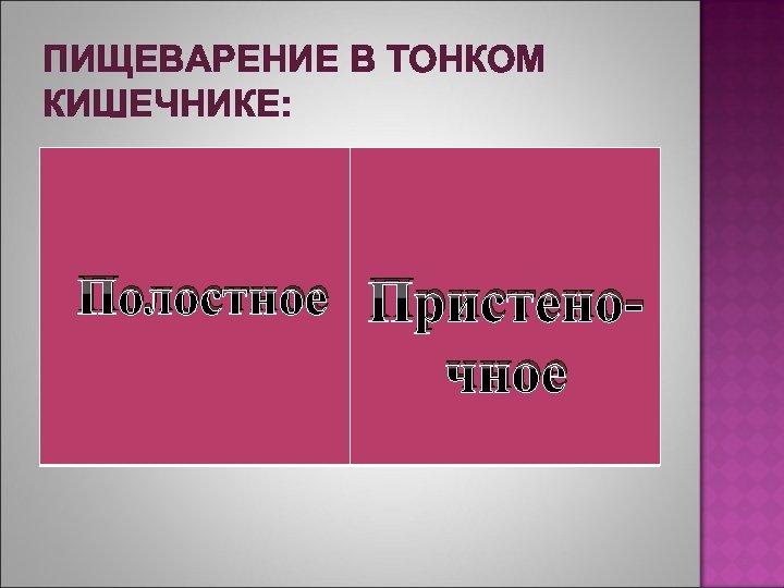 ПИЩЕВАРЕНИЕ В ТОНКОМ КИШЕЧНИКЕ: Полостное Пристено- чное