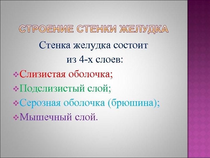 Стенка желудка состоит из 4 -х слоев: v. Слизистая оболочка; v. Подслизистый слой; v.