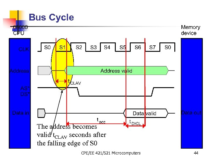 Bus Cycle The address becomes valid t. CLAV seconds after the falling edge of