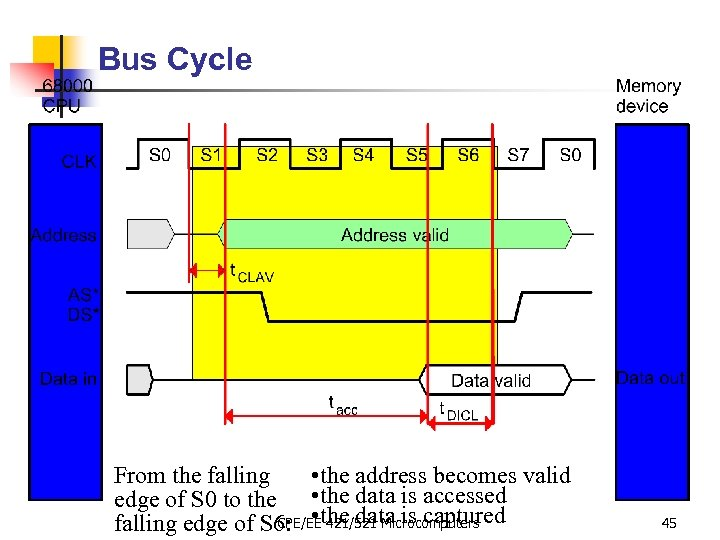 Bus Cycle From the falling • the address becomes valid edge of S 0