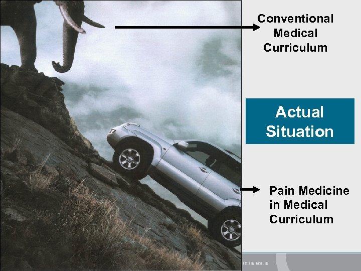 Conventional Medical Curriculum Actual Situation Pain Medicine in Medical Curriculum