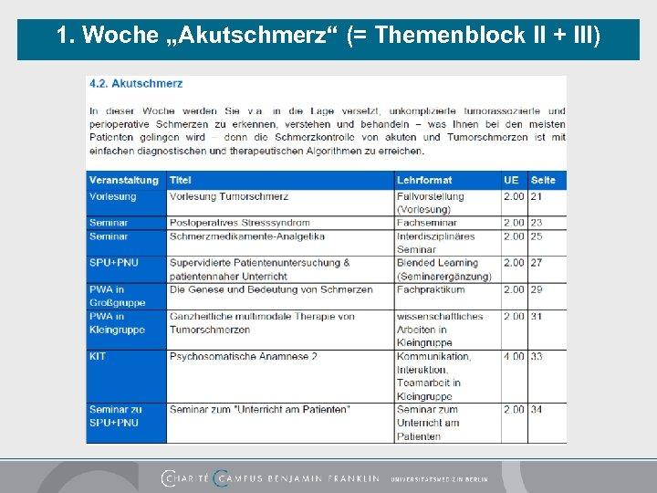 """1. Woche """"Akutschmerz"""" (= Themenblock II + III)"""