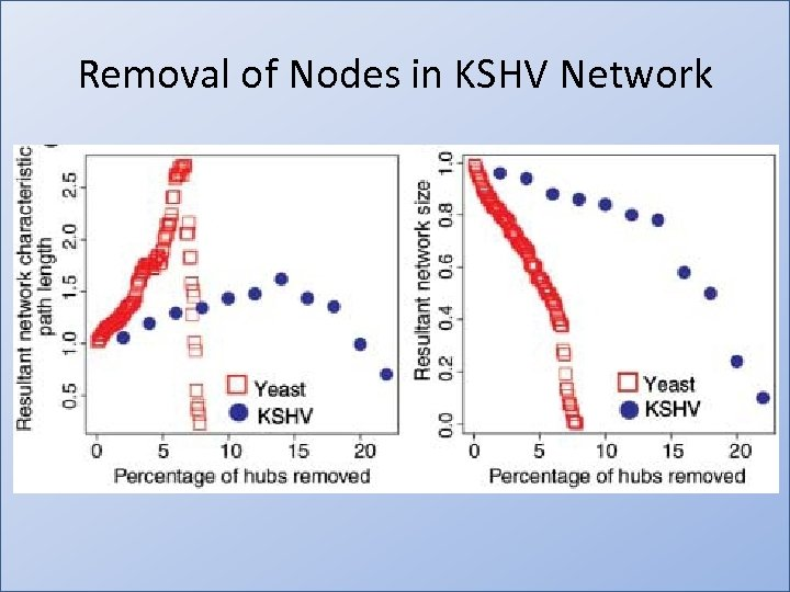 Removal of Nodes in KSHV Network