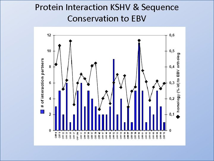 Protein Interaction KSHV & Sequence Conservation to EBV
