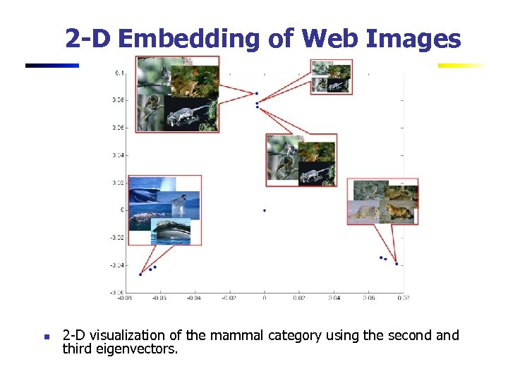 2 -D Embedding of Web Images n 2 -D visualization of the mammal category