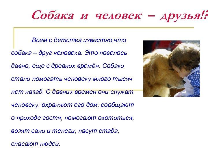 Собака и человек – друзья!? Всем с детства известно, что собака – друг человека.