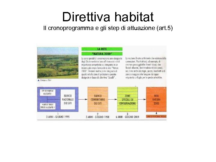 Direttiva habitat Il cronoprogramma e gli step di attuazione (art. 5)