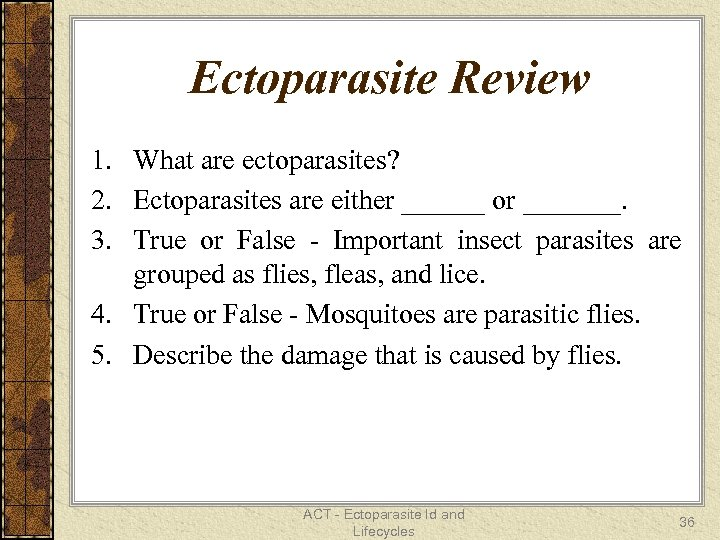 Ectoparasite Review 1. What are ectoparasites? 2. Ectoparasites are either ______ or _______. 3.
