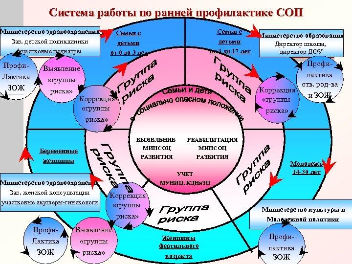 Система работы по ранней профилактике СОП Министерство здравоохранения Зав. детской поликлиники участковые педиатры Профи.