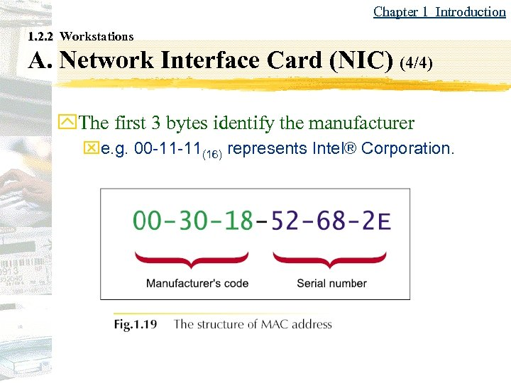 Chapter 1 Introduction 1. 2. 2 Workstations A. Network Interface Card (NIC) (4/4) y.