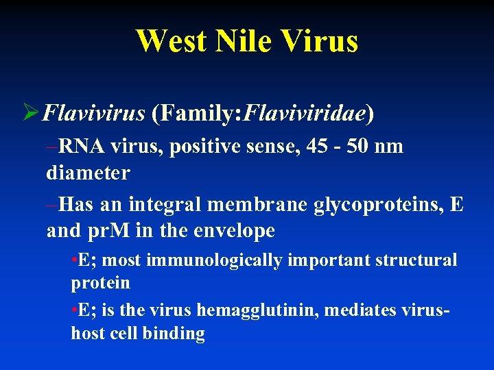 West Nile Virus ØFlavivirus (Family: Flaviviridae) –RNA virus, positive sense, 45 - 50 nm
