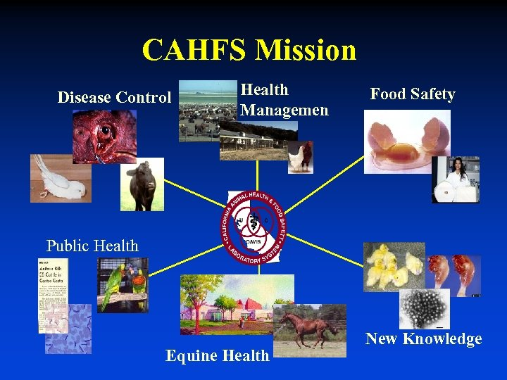 CAHFS Mission Disease Control Health Managemen t Food Safety Public Health Equine Health New
