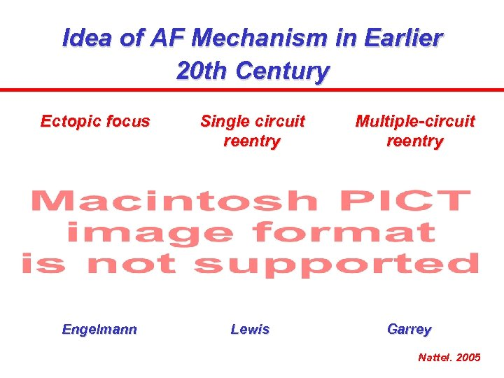 Idea of AF Mechanism in Earlier 20 th Century Ectopic focus Single circuit reentry