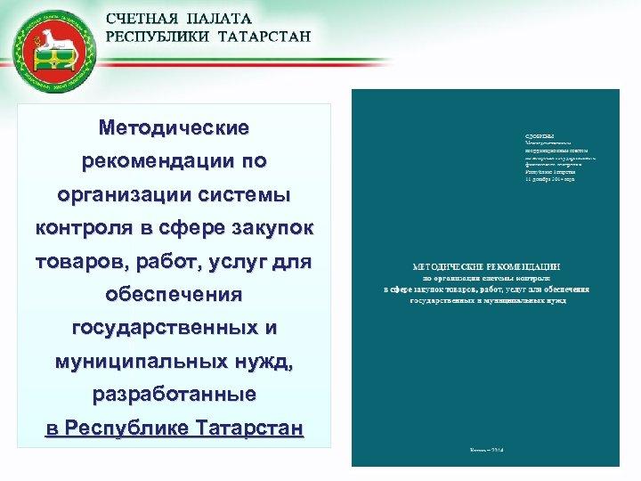 Методические рекомендации по организации системы контроля в сфере закупок товаров, работ, услуг для обеспечения