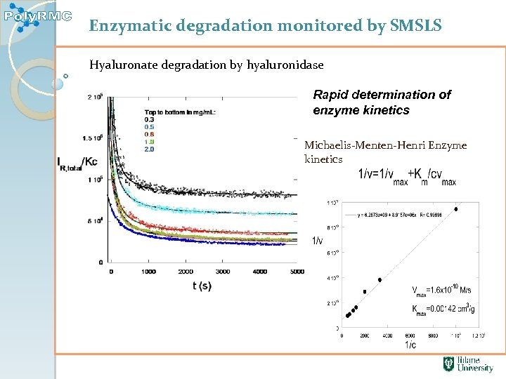 Enzymatic degradation monitored by SMSLS Hyaluronate degradation by hyaluronidase Rapid determination of enzyme kinetics