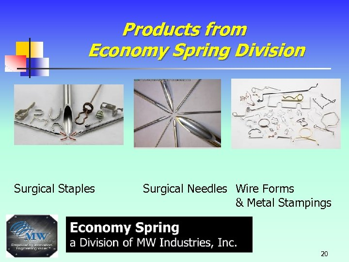 Products from Economy Spring Division Surgical Staples Surgical Needles Wire Forms & Metal Stampings