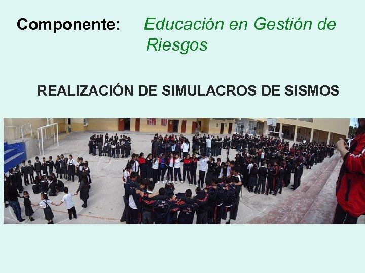 Componente: Educación en Gestión de Riesgos REALIZACIÓN DE SIMULACROS DE SISMOS