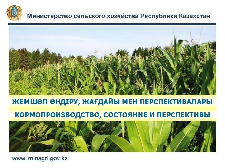 Министерство сельского хозяйства Республики Казахстан ЖЕМШӨП ӨНДІРУ, ЖАҒДАЙЫ МЕН ПЕРСПЕКТИВАЛАРЫ КОРМОПРОИЗВОДСТВО, СОСТОЯНИЕ И ПЕРСПЕКТИВЫ