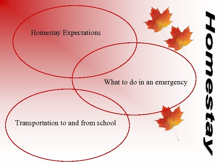 Homestay Expectations What to do in an emergency Transportation to and from school