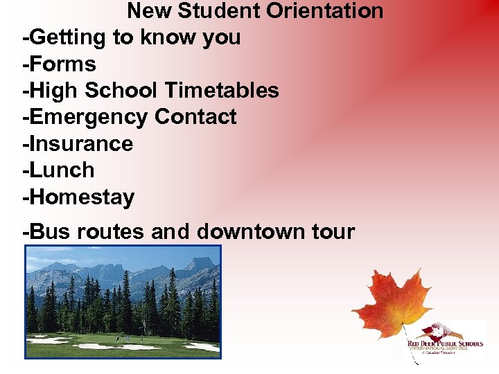 New Student Orientation -Getting to know you -Forms -High School Timetables -Emergency Contact -Insurance