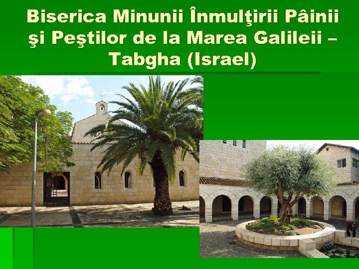 Biserica Minunii Înmulţirii Pâinii şi Peştilor de la Marea Galileii – Tabgha (Israel)