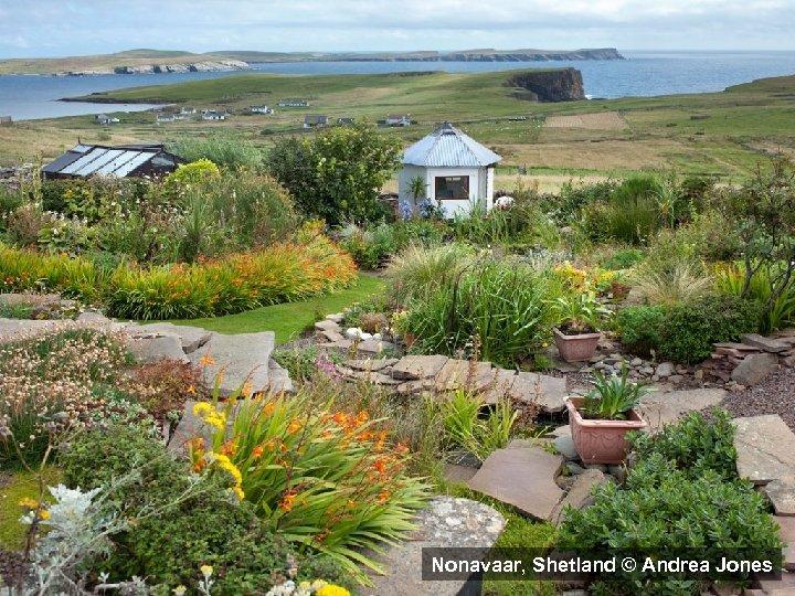 Nonavaar, Shetland © Andrea Jones