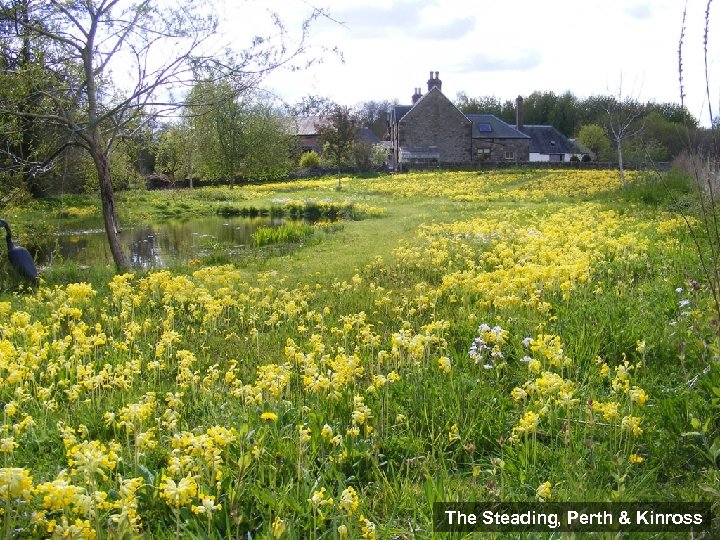 The Steading, Perth & Kinross