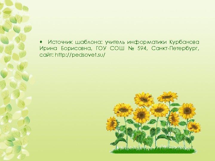 · Источник шаблона: учитель информатики Курбанова Ирина Борисовна, ГОУ СОШ № 594, Санкт-Петербург, сайт: