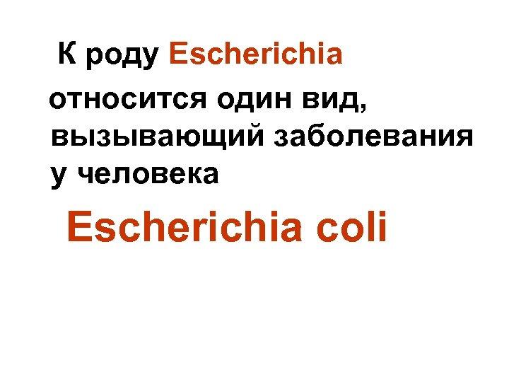 К роду Escherichia относится один вид, вызывающий заболевания у человека Escherichia соli