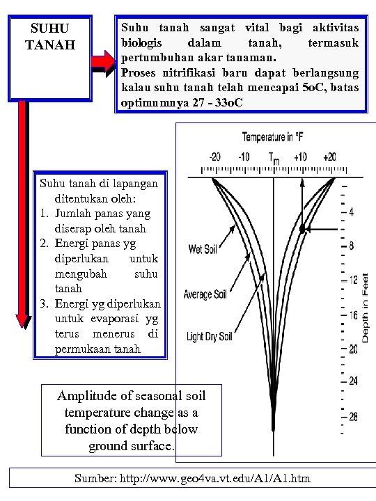 SUHU TANAH Suhu tanah sangat vital bagi aktivitas biologis dalam tanah, termasuk pertumbuhan akar