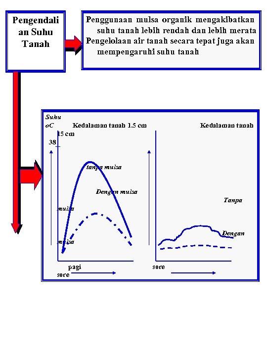 Penggunaan mulsa organik mengakibatkan suhu tanah lebih rendah dan lebih merata Pengelolaan air tanah