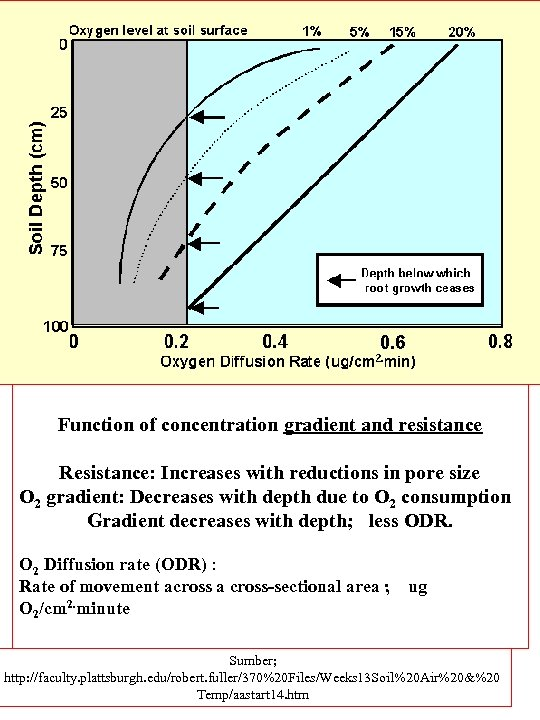 Function of concentration gradient and resistance Resistance: Increases with reductions in pore size O