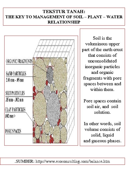 TEKSTUR TANAH: THE KEY TO MANAGEMENT OF SOIL – PLANT – WATER RELATIONSHIP Soil