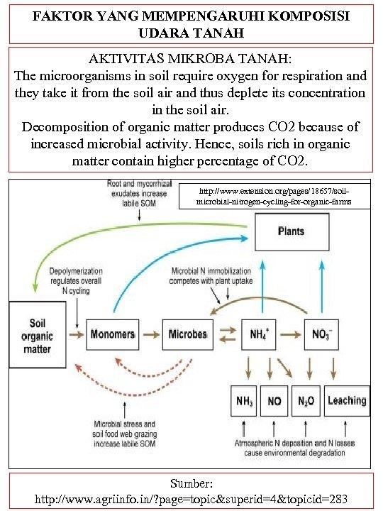 FAKTOR YANG MEMPENGARUHI KOMPOSISI UDARA TANAH AKTIVITAS MIKROBA TANAH: The microorganisms in soil require