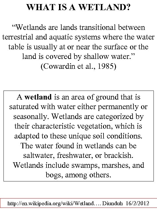 "WHAT IS A WETLAND? ""Wetlands are lands transitional between terrestrial and aquatic systems where"