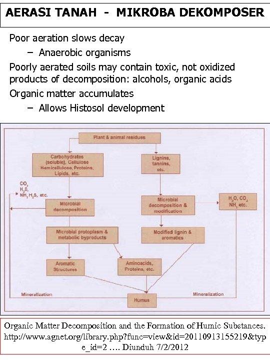 AERASI TANAH - MIKROBA DEKOMPOSER Poor aeration slows decay – Anaerobic organisms Poorly aerated