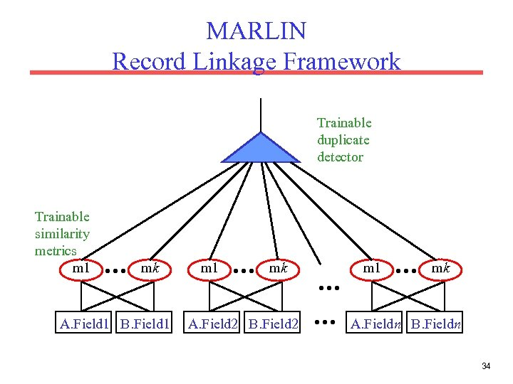 MARLIN Record Linkage Framework Trainable duplicate detector Trainable similarity metrics m 1 … mk
