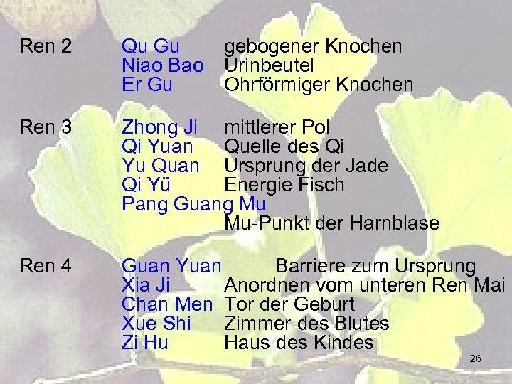 Ren 2 Qu Gu Niao Bao Er Gu gebogener Knochen Urinbeutel Ohrförmiger Knochen Ren
