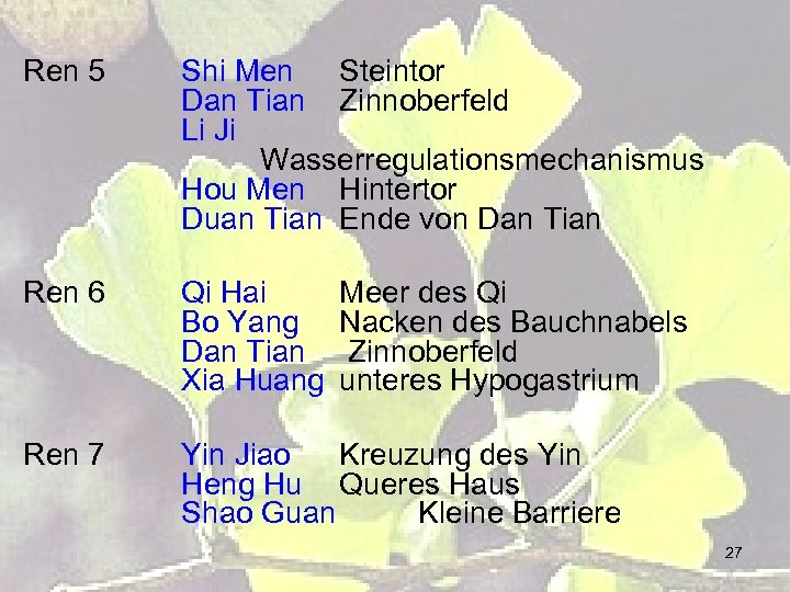 Ren 5 Shi Men Steintor Dan Tian Zinnoberfeld Li Ji Wasserregulationsmechanismus Hou Men Hintertor