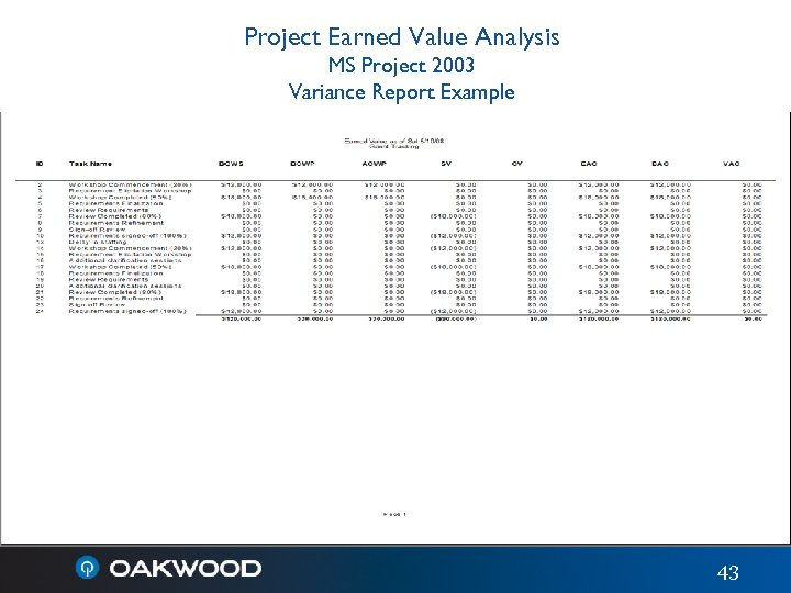 Project Earned Value Analysis MS Project 2003 Variance Report Example 43