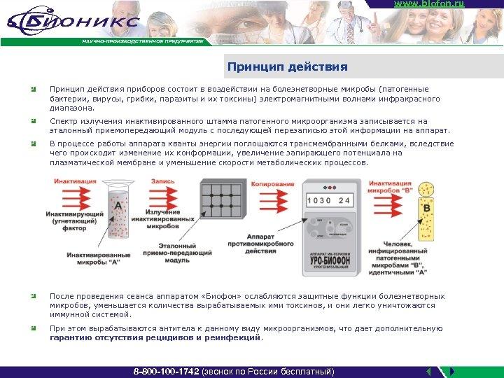 www. biofon. ru Принцип действия приборов состоит в воздействии на болезнетворные микробы (патогенные бактерии,