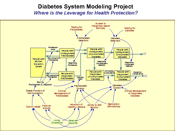 Diabetes System Modeling Project Where is the Leverage for Health Protection? Access to Preventive