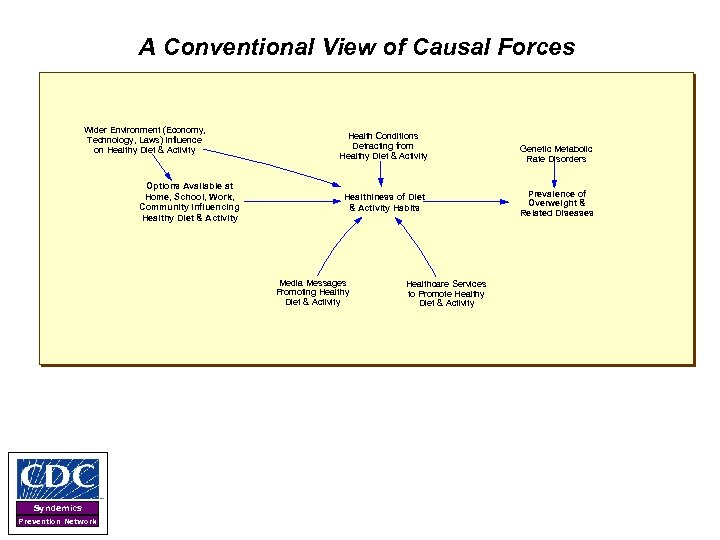 A Conventional View of Causal Forces Wider Environment (Economy, Technology, Laws) Influence on Healthy