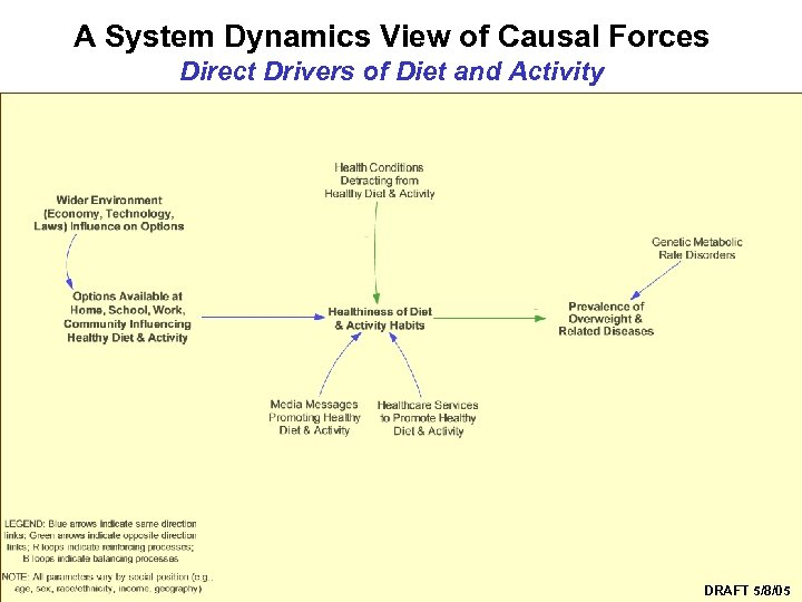 A System Dynamics View of Causal Forces Direct Drivers of Diet and Activity Syndemics
