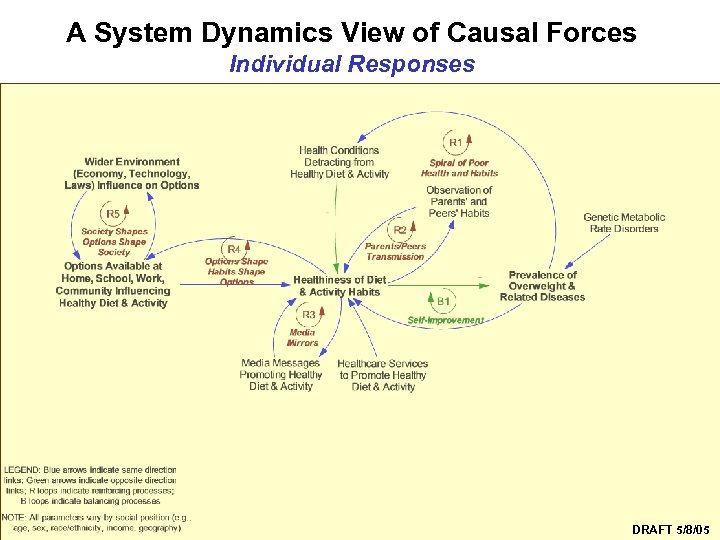 A System Dynamics View of Causal Forces Individual Responses Syndemics Prevention Network DRAFT 5/8/05