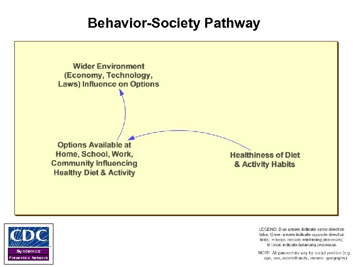 Behavior-Society Pathway Syndemics Prevention Network