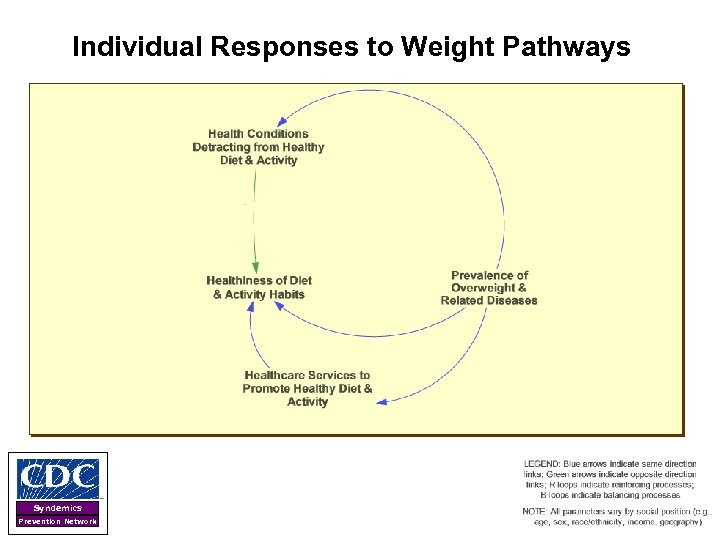 Individual Responses to Weight Pathways Syndemics Prevention Network