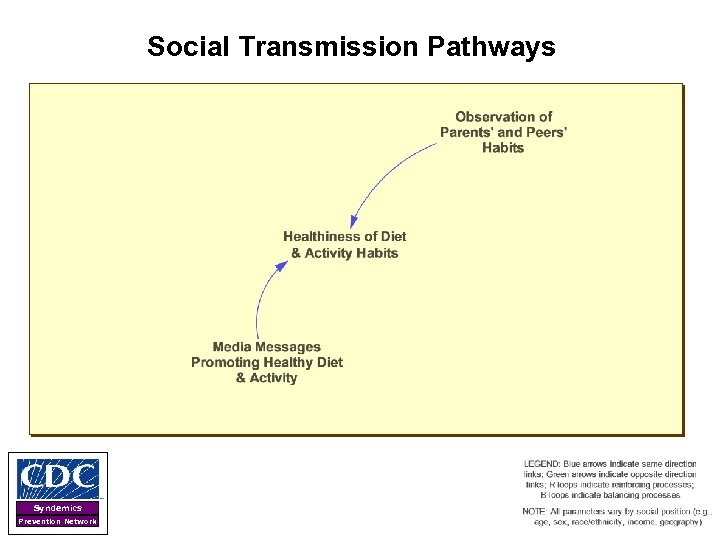 Social Transmission Pathways Syndemics Prevention Network