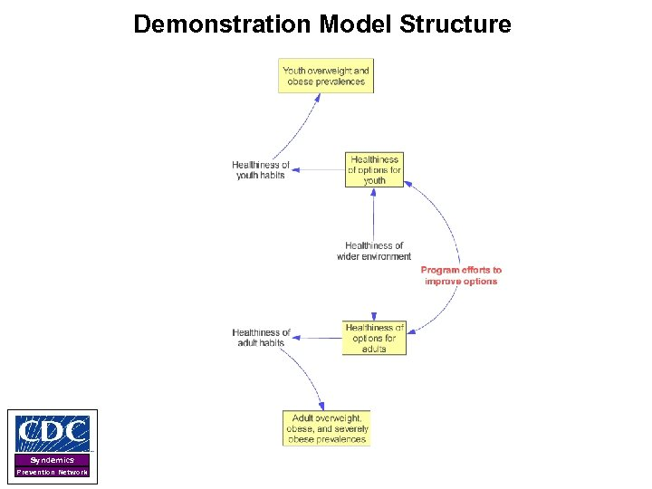 Demonstration Model Structure Syndemics Prevention Network