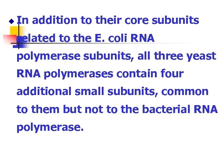 u In addition to their core subunits related to the E. coli RNA polymerase